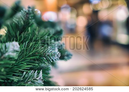 Green needles on spruce, fir branches. Abstract blurred holiday background with Bokeh. Selective focus. Winter holiday, Happy New Year, xmas. Copy space for text