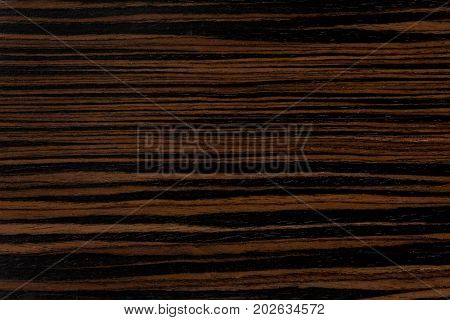 Dark ebony wood background. Extremely high resolution photo.