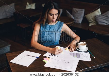 Concentration On Project. Beautiful Young Woman Writing In Copybook While Sitting In Restaurant
