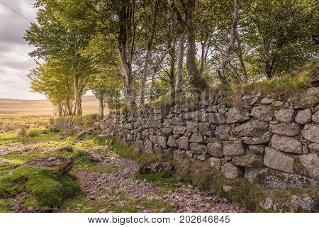 Old Granite Stone Wall. Dartmoor National Park is a vast moorland in the county of Devon, England.