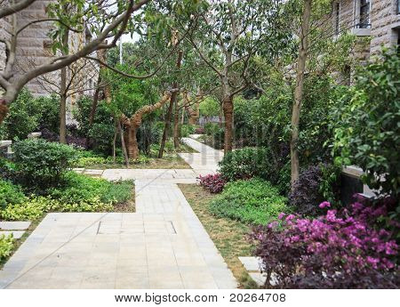 Garden with small footpath through  in a residential district