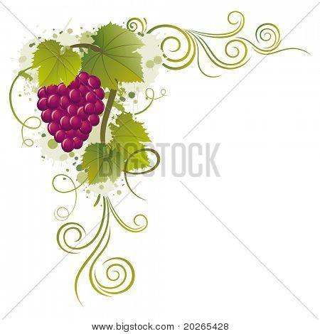 grape vector borders