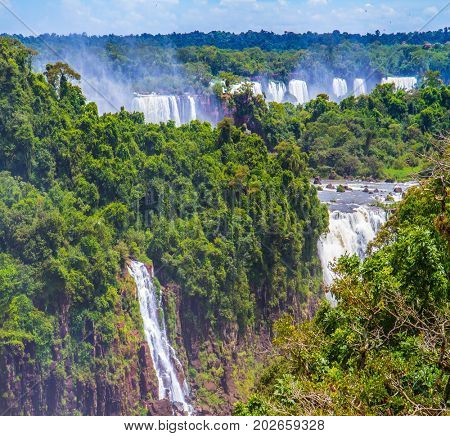 The fantastic roaring Iguazu Falls in tropical forest. Incredible exotic waterfalls of Iguazu in South America, on the border of three countries: Brazil, Argentina and Paraguay