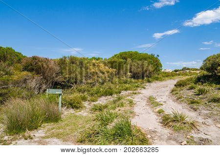 Australian Outback Landscape With Unsealed Road, Fire Trail