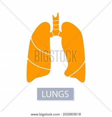 Vector silhouette medical illustration of human body organ - lungs with trachea. Logo template for clinic, hospital. Symbol for asthma, tuberculosis, pneumonia. Health care of respiratory system.