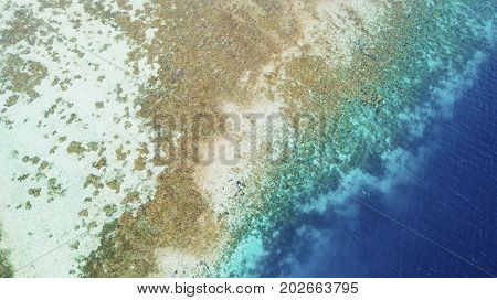 Aerial view of beautiful coastline with brown algae and turquoise water in the Kanawa island