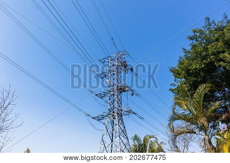 Electricty Power Lines Maintenance Repairs