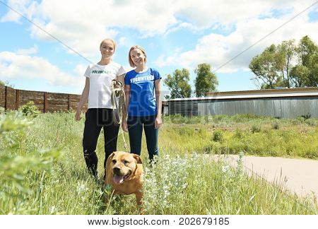 Female volunteers walking dog on the territory of animal shelter