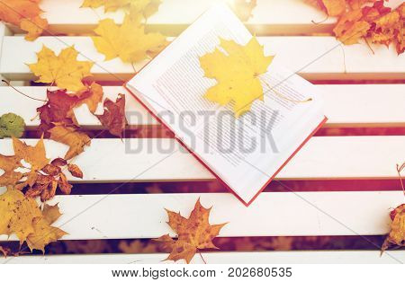 season, education and literature concept - open book on bench in autumn park
