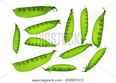 Sugar peas (Pisum sativum) pods isolated against white backgroun