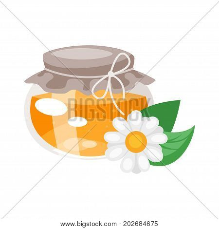 Vector cartoon style glass honey jar with camomile flower.  Isolated on white background.