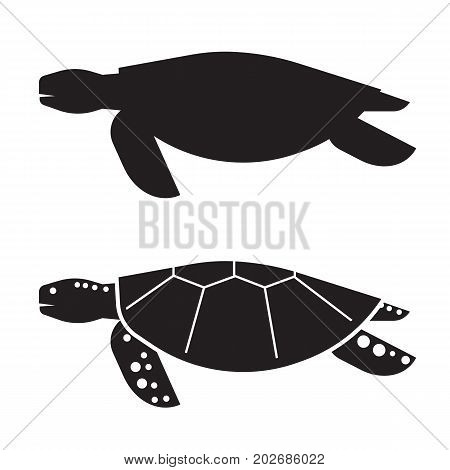 Sea turtle vector illustration in outline design. Logo or label template. Silhouette turtle icon.