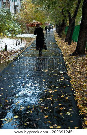 Woman With An Umbrella Walks Along