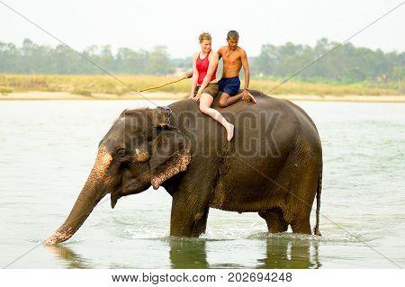 Female Tourist Elephant Ride Chitwan River Nepal