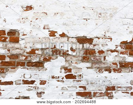 An old textured red brick wall with a peeling white old peeling paint