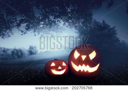 Halloween pumpkins, carved jack-o-lantern on autumn forest background