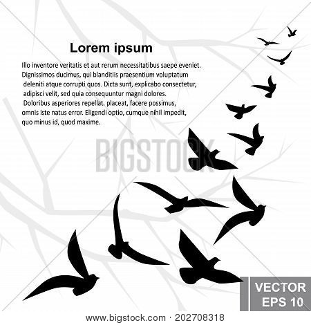 A Flock Of Birds. Silhouette. Card. They're Flying. For Your Design.