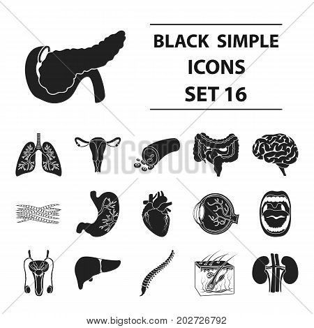 Organs set icons in black style. Big collection organs vector symbol stock