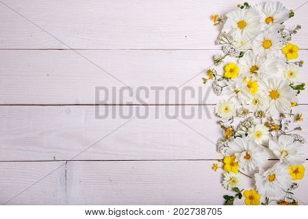 A bouquet of white cosmea or cosmos on white boards. Garden yellow flowers over handmade wooden table background. Backdrop with copy space. Mother's, Valentines, Women's, Wedding Day concept.