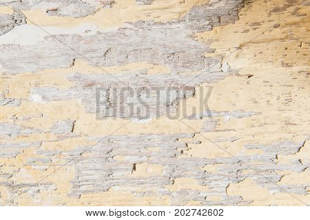Texture Background Of Authentic Old Painted Wood.