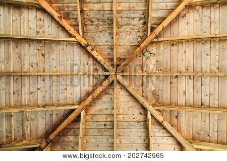 Beehives and Knotholes in a Pavilion Roof