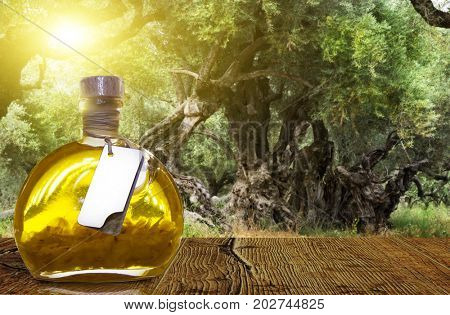 The island of Zakynthos.Olive oil in a bottle in the background of an olive grove