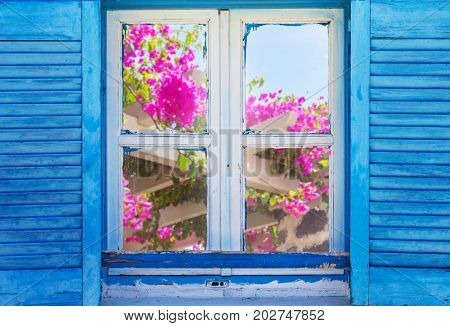 Beautiful vintage Greek window with blue shutters on a white wall. Typical Greek picture with blooming oleander.