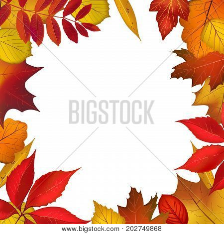 Autumn colored foliage frame for your design. Bright falling leaves border with place for your text. Vector illustration
