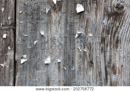 Wooden Panel Full Of Pushpins And Staples
