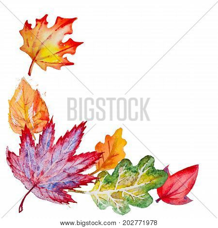 Vector composition with bright hand drawn watercolor orange, yellow, green, red and vinous leaves on the white background