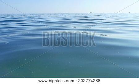 Water sea blue background nature. Sea the waves beautiful background