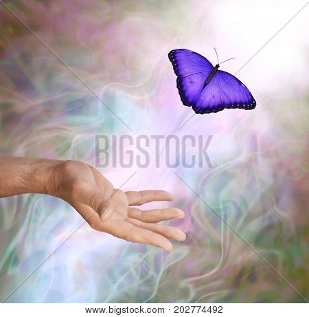 Purple Butterfly Symbolic Spiritual Release -  Male hand appearing to release a vivid purple butterfly up into the Light against a misty smokey subtle colored background