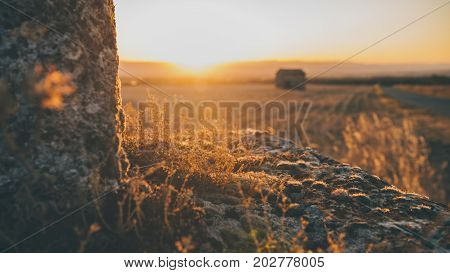 Moss and succulents on a dilapidated monument highlighted by the rays of the setting sun and a view over the rhône valley in france