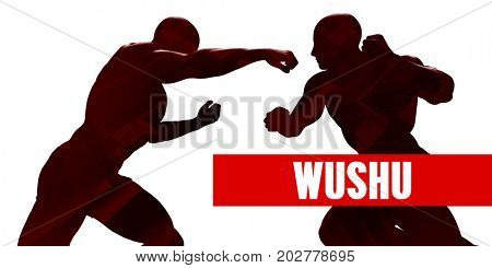 Wushu Class with Silhouette of Two Men Fighting 3D Illustration Render