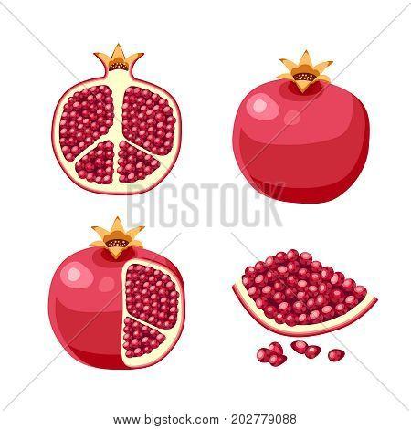 Superfood fruit. Set of pomegranate fruits. Vector illustration cartoon flat icon isolated on white.