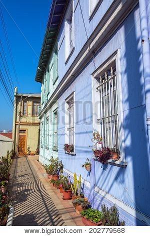 Narrow alley by a blue building lined with potted plants in Valparaiso Chile