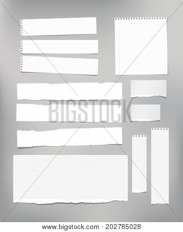 White striped note paper, copybook, notebook sheet stuck on light gray background