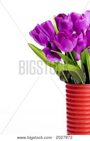 Purple Tulips In Red Vase