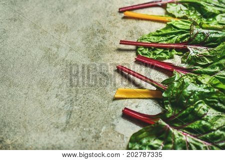 Flat-lay of fresh leaves of swiss chard over grey concrete stone background, copy space, selective focus. Food frame. Clean eating, vegetarian, alcaline diet, organic, healthy cooking concept