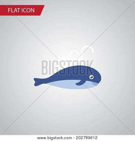 Cachalot Vector Element Can Be Used For Cachalot, Whale, Humpback Design Concept.  Isolated Whale Flat Icon.