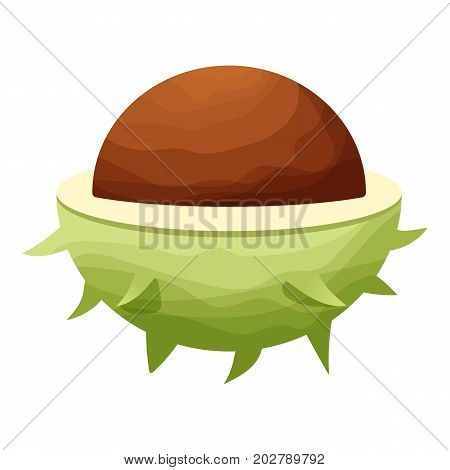 Chestnut icon. Cartoon illustration of chestnut vector icon for web