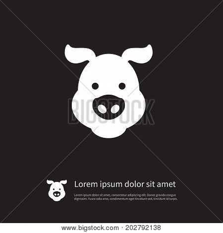 Hog Vector Element Can Be Used For Hog, Pig, Swine Design Concept.  Isolated Swine Icon. poster