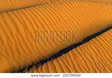 sand dunes Landscape ripple sands ripples background