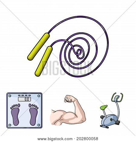 Biceps, exercise bike, scales for weighing, skalka. Fitnes set collection icons in cartoon style vector symbol stock illustration .