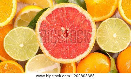 grapefruit and citrous fruit