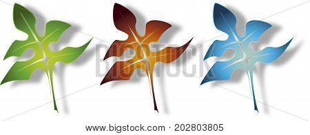 Leaves vectors in diferent colors for diferent seasons