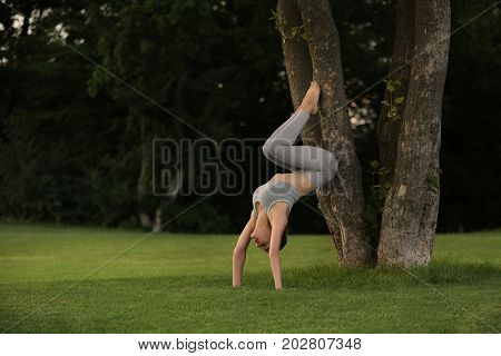Young woman practicing yoga in park near trees