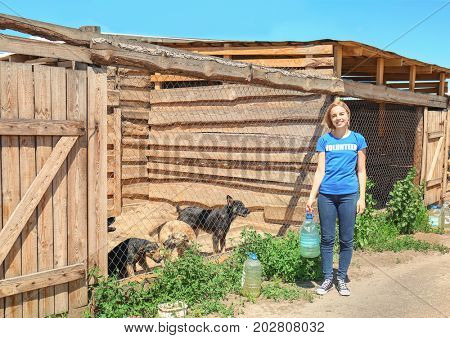 Female volunteer giving water to dogs in shelter cage