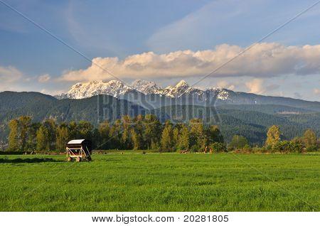 Farmland And Golden Ears Mountain, Pitt Meadows