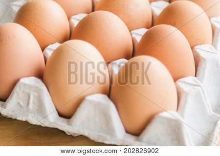 Fresh eggs in egg rack on wood table. Prepare chicken eggs for cooking or bakery on rustic wood table. Close up with selective focus concept fresh eggs with copy space for background or wallpaper. Eggs on egg rack ready to use for cooking.